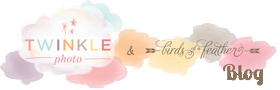 Twinkle Photo Blog