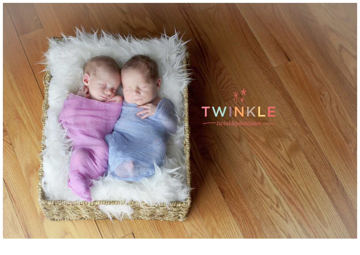 Best Lehigh Valley Newborn Photographer Recommended, Twins, Babies, Newborn, Boy and Girl, Newborn Photo Ideas, Twinkle Photography