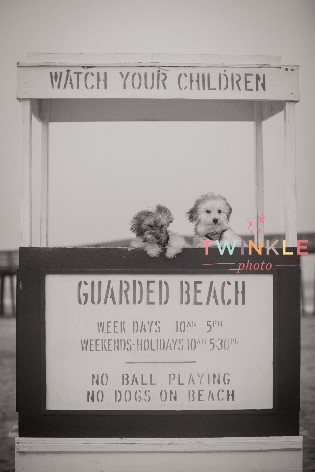 OCNJ Ocean City NJ New Jersey Beach Family Portrait Photographer Photography Twinkle Photo-17